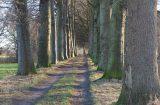 Mooi laantje langs de Schipbeek