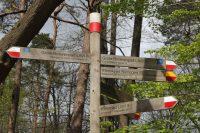 Vele wandelroutes kruisen de Duivelsberg